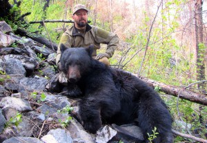Rob Bear 1