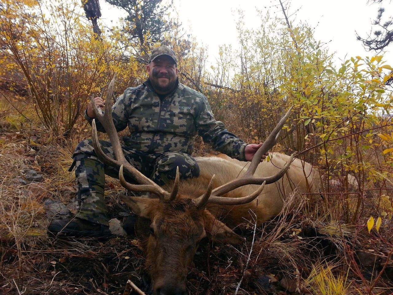 Q Creek Elk Hunting Elk Hunting | Horse Cr...